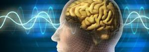 Genes exclusivamente presentes no ser humano são más notícias para o evolucionismo