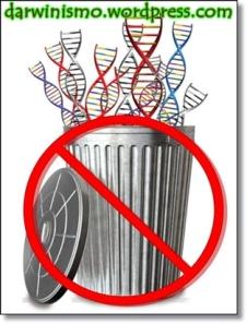 """Não existe """"ADN lixo"""""""