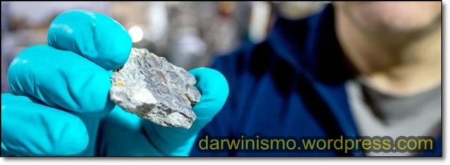 Pele de Dinossauro