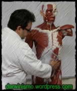 Estudo da Medicina