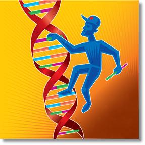 ADN Reparação