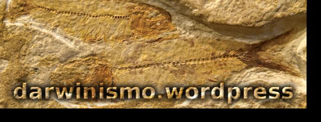 Peixes_Fossilizados