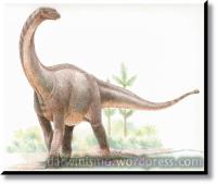Dinossauro_Sauropode