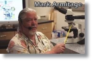 Mark_Armitage