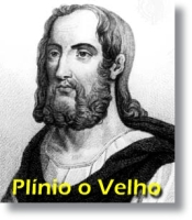 Plinio_o_Velho