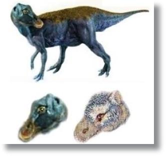 Dinossauro_Bico_Pato_3