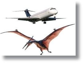 Dinossauro_Pterossauro_Aviao